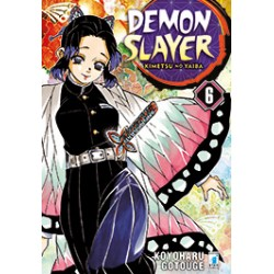 Demon Slayer vol. 6
